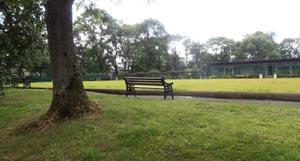 Whitehead Park Bury